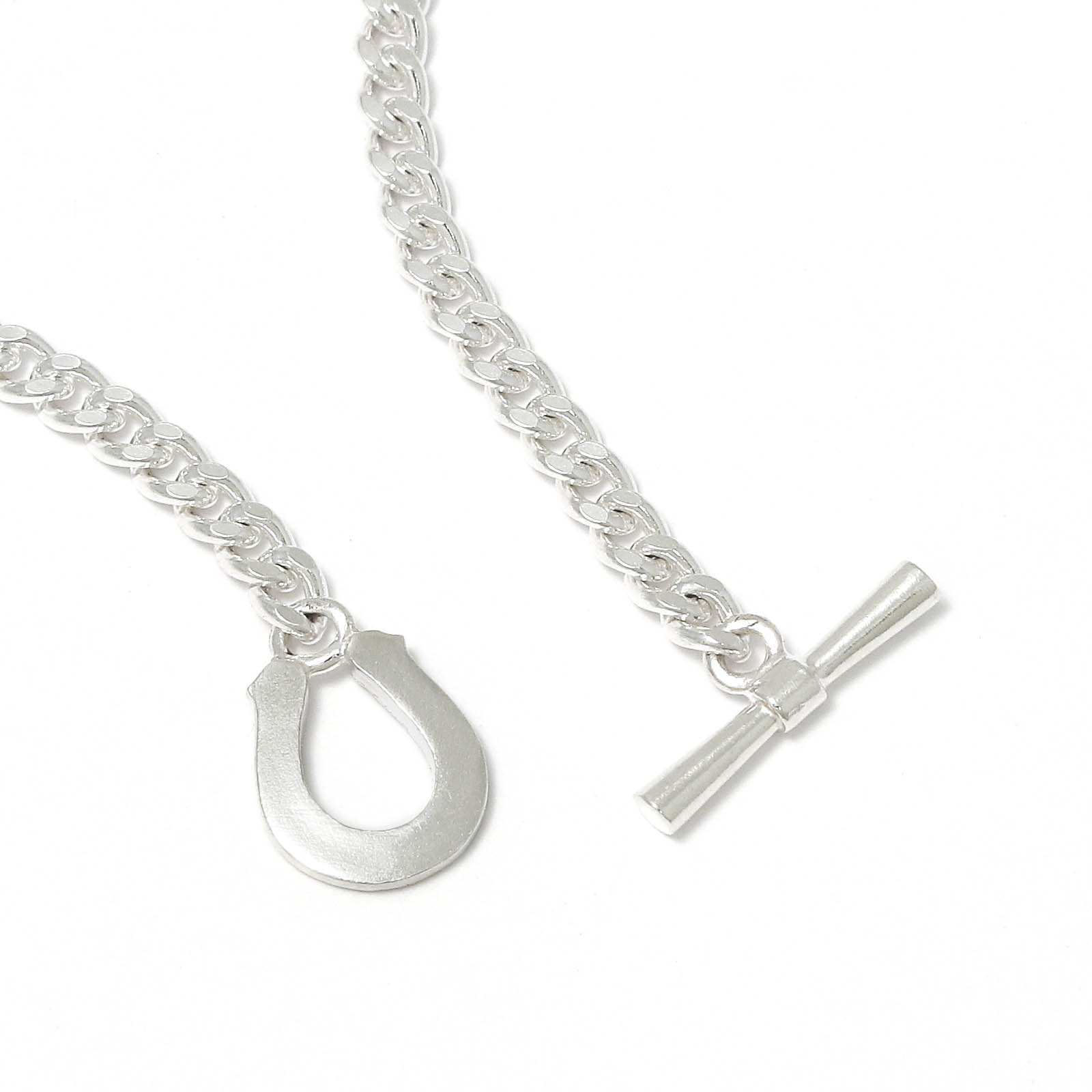 Classic Chain Necklace w/Horseshoe